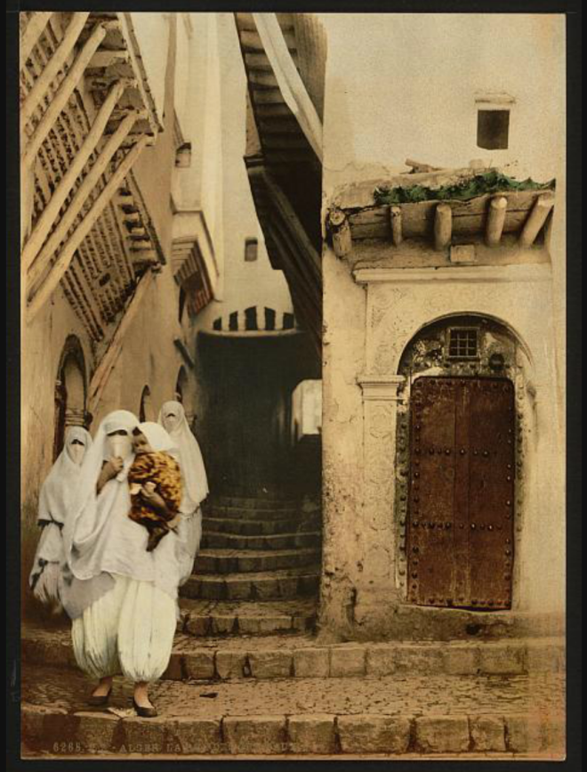 Street of the camels, Algiers, Algeria [ca. 1899].